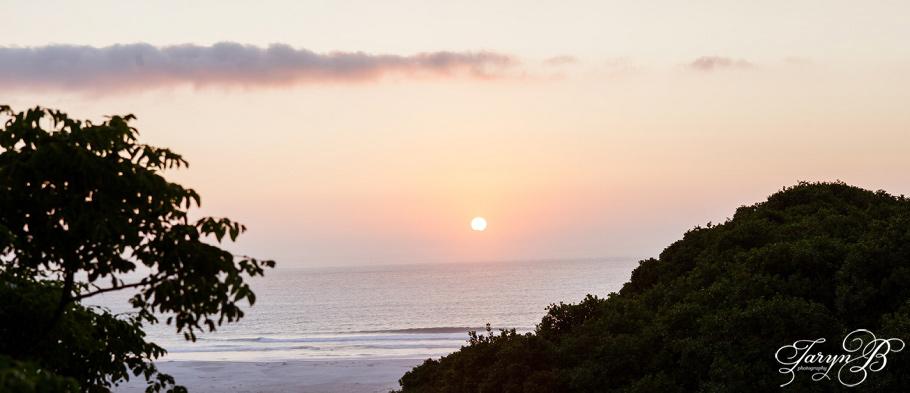 Greg&Eilidh_Wedding_Monkey_Valley_Cape_Town_Photographer_Taryn_B_Photography.jpg-56